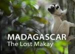 03_F-N-NHK-TN_04_Madagascar